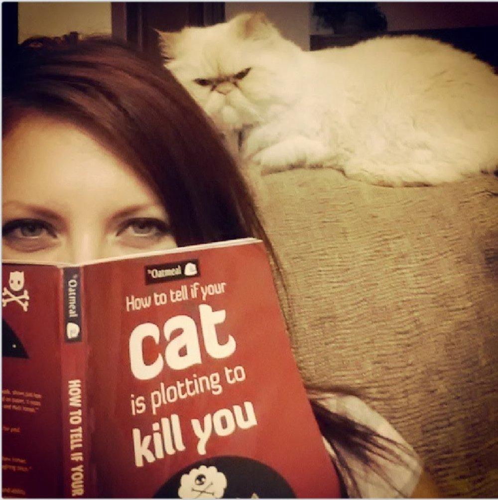 funny-cat-074-017.jpg