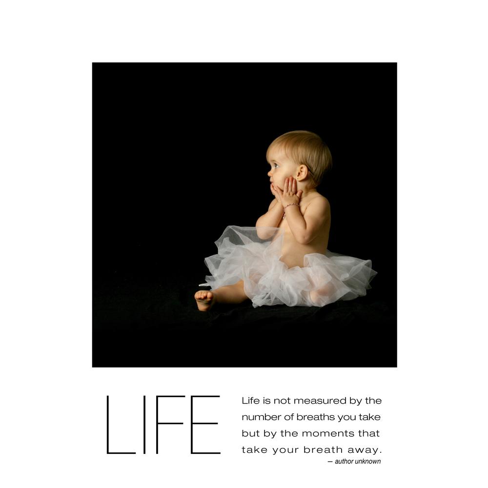life-16x16.jpg
