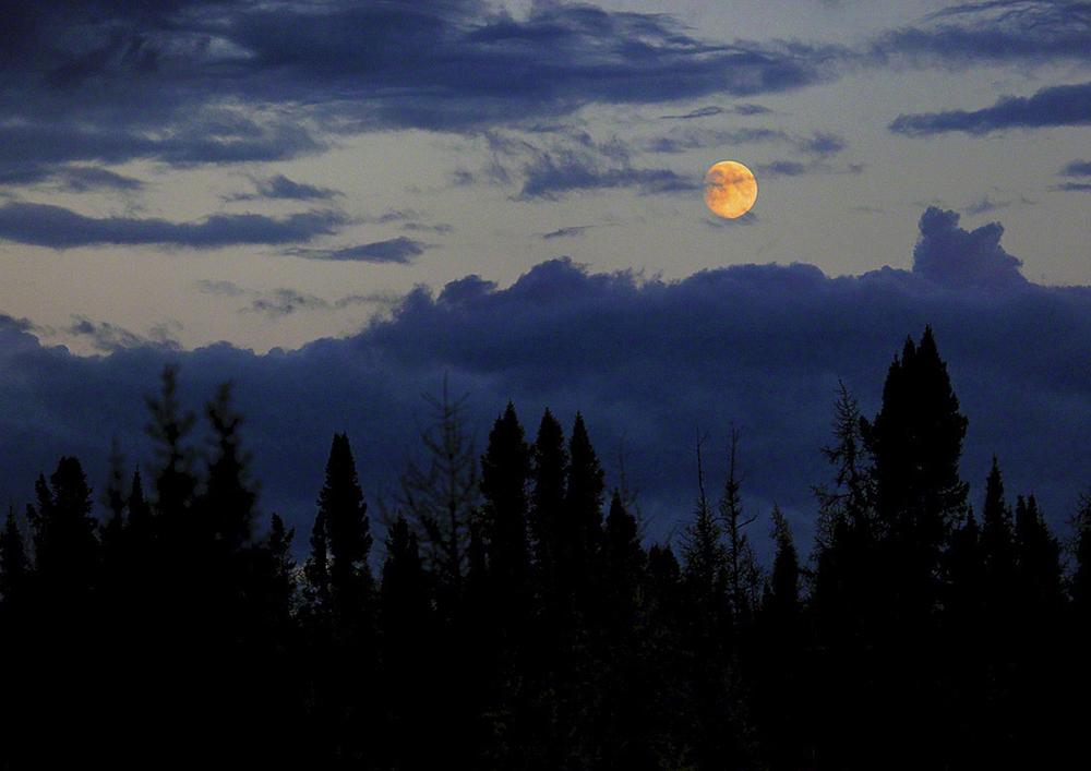 16 Nunavik Lune F 1100 x 778.jpg
