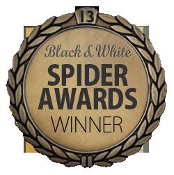 spiderfellow13thwinner.png