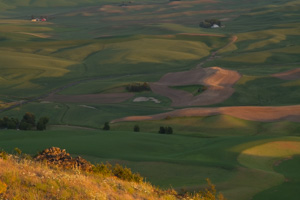Tim_Grey-Palouse-06.jpg