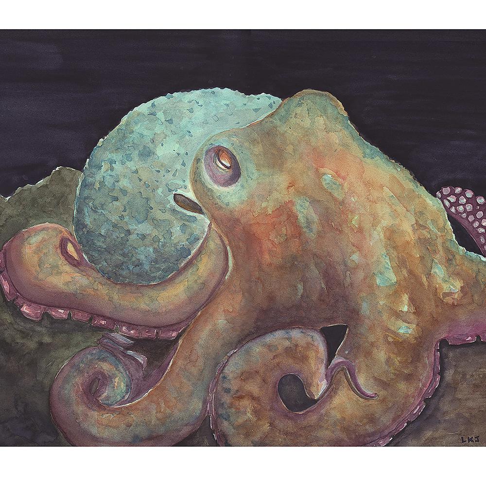 Octopus Cyanea Watercolor