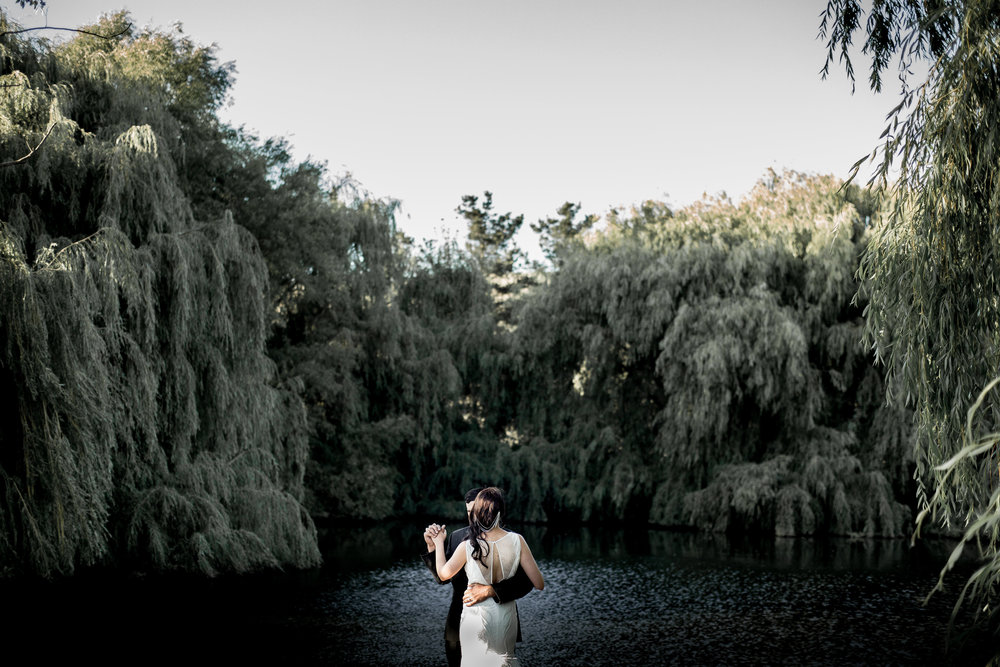 weeping willow pond photo by freda banks photography