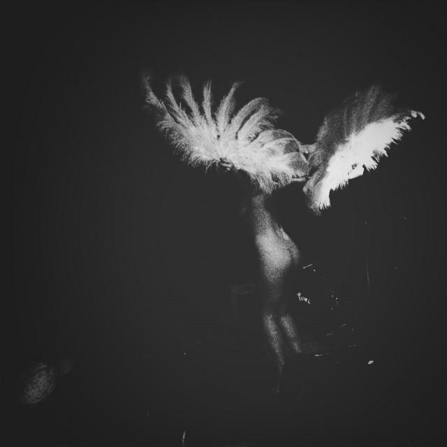 Birds of All Feathers No MoreAtomic Rodeo, Seattle Wa  at  Crocodile Lounge  by  dogonpremise  on  EyeEm
