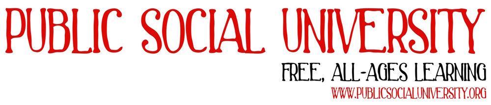 Public Social University logo