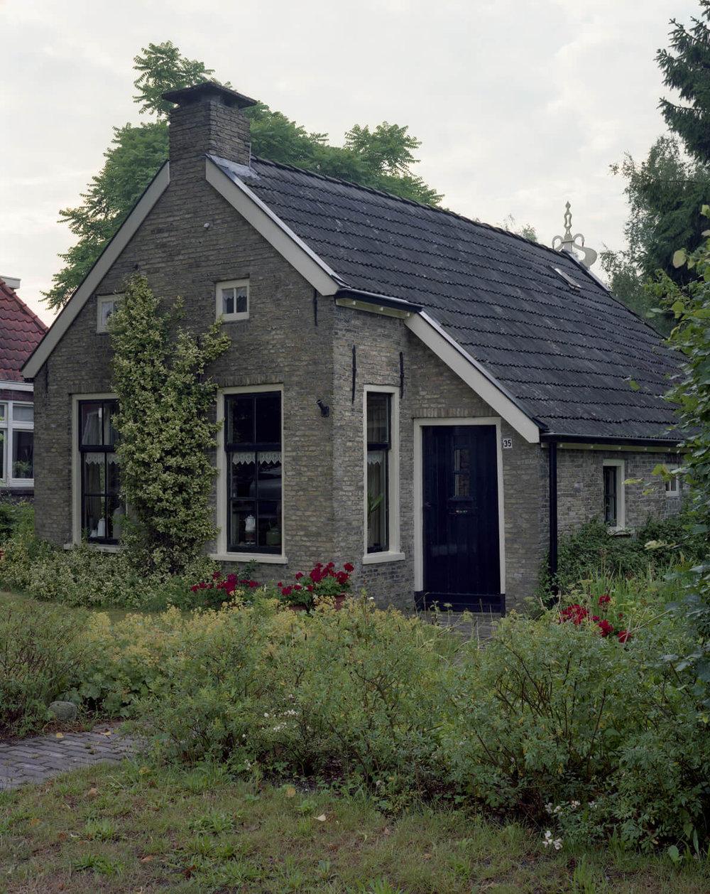 Friesland.2.2010 (1).jpg