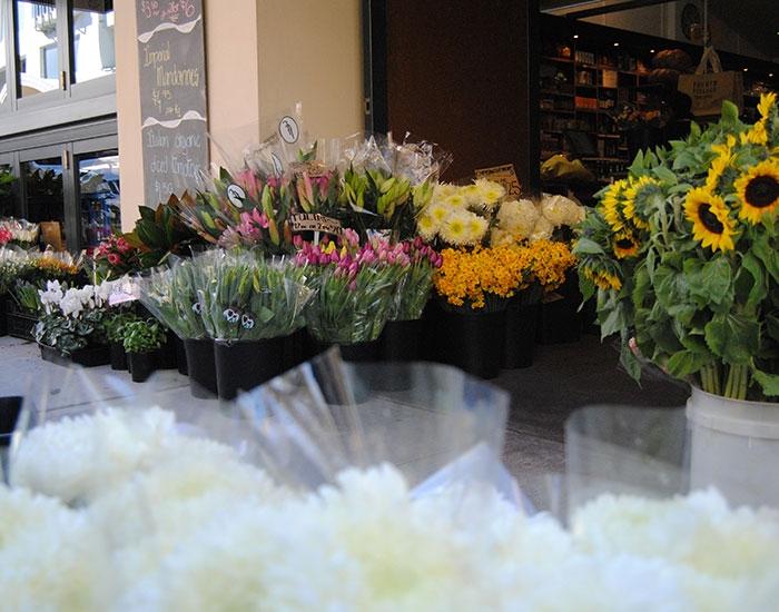 Fresh Cut Flowers - Fourth Village Mosman