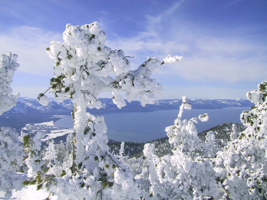 Lake Tahoe - Winter.jpg