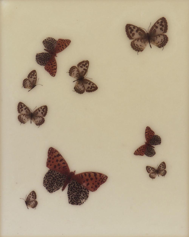 Paper Wings Pierrot   2015 Encaustic on panel 10 in. x 8 in.