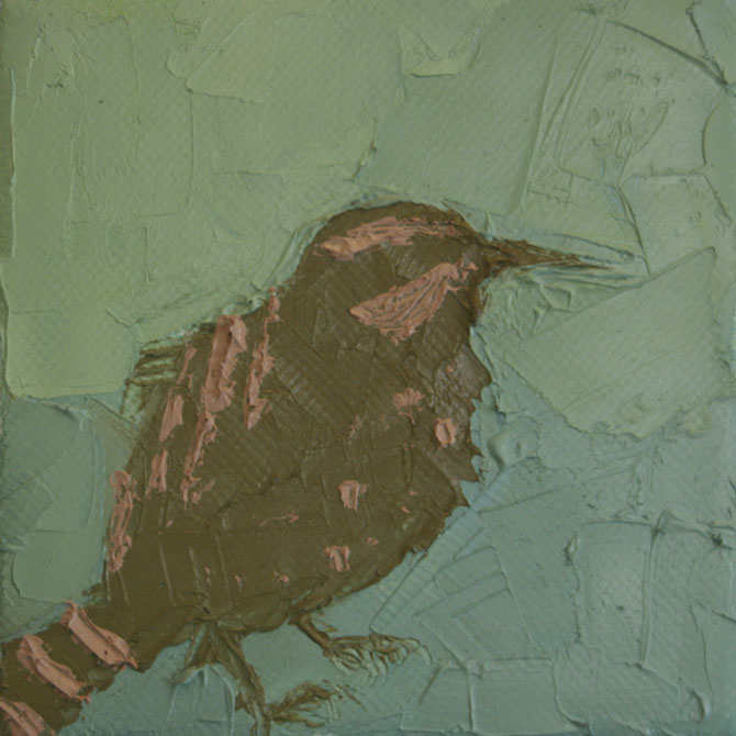 Wren Study,   2012  Oil and wax on canvas 4 in. x 4 in.