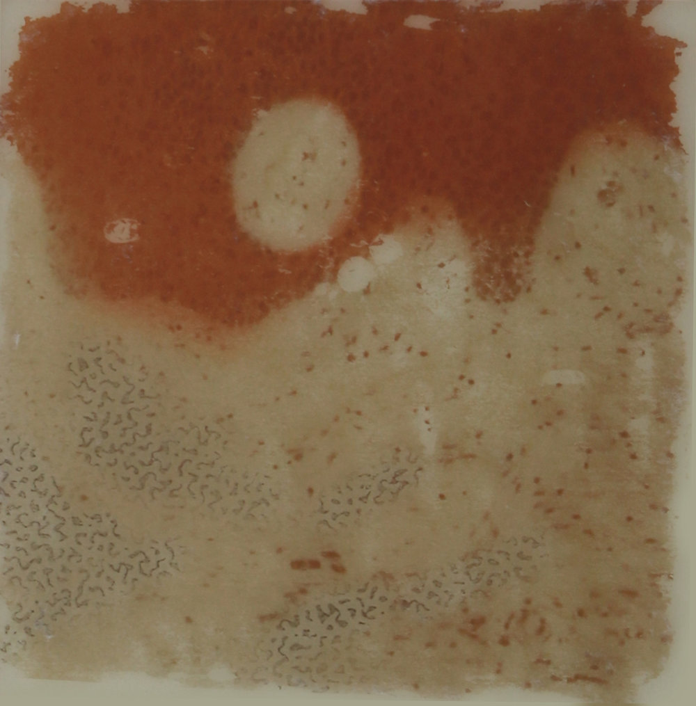 Dotty Envelope and Epidermis ,  2017  Encaustic on panel 6 in. x 6 in.