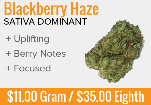 Blackberry Haze Combined.png