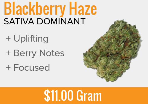 Blackberry Haze Gram.png
