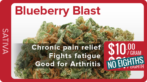 Blueberry Blast Gram-01.png