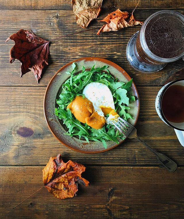 Really feeling fall this morning! 🍂🍁 An egg, puréed sweet potato, and arugula, with a cup of rooibos tea for breakfast! Such perfection!