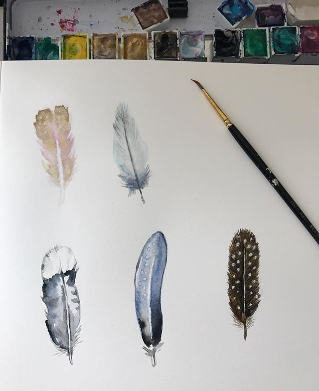 Watercolour feathers for hens invites 🐓