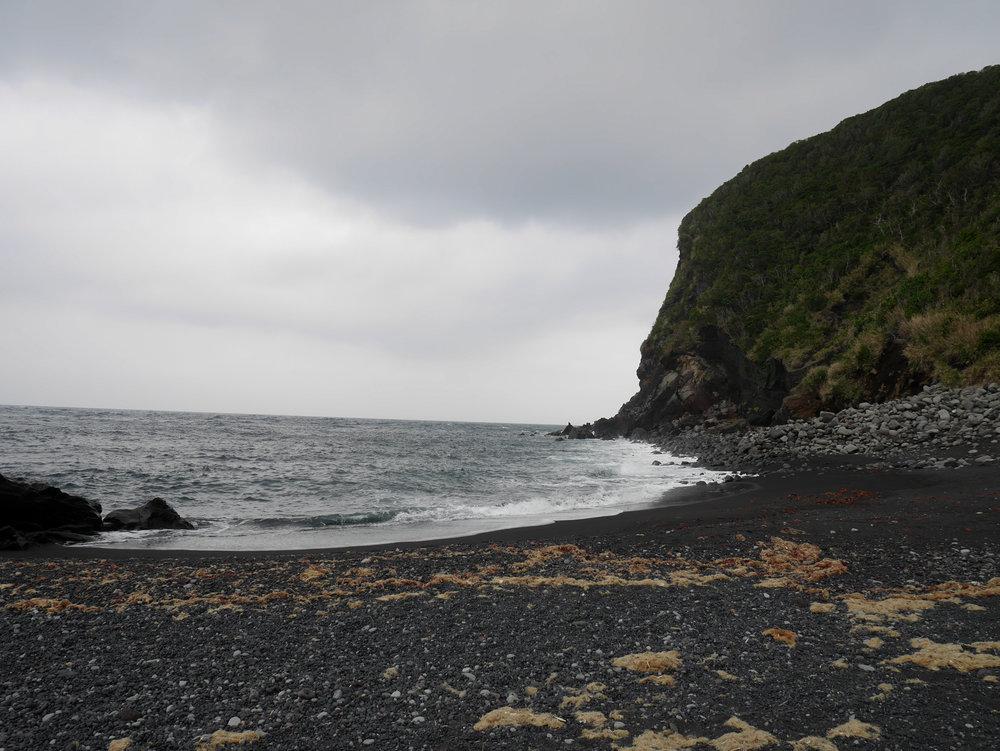Maja blog Oshima-9.jpg