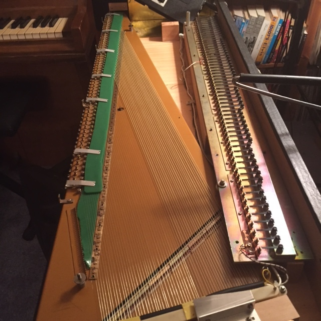 A  Clavigel strip is placed over the strings and held in place by clips.