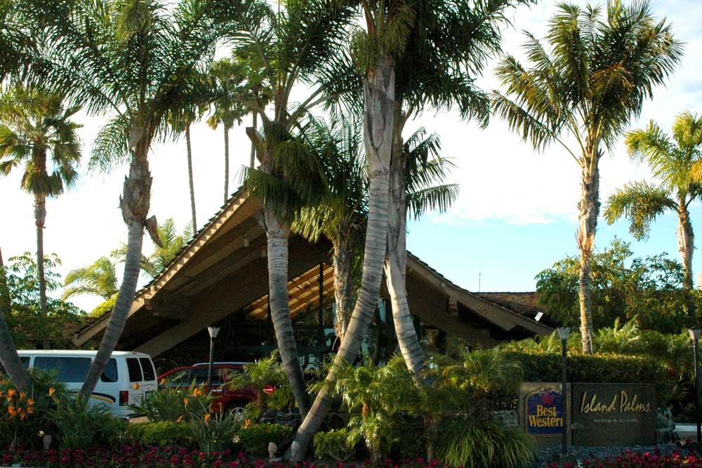 Best Western Island Palms