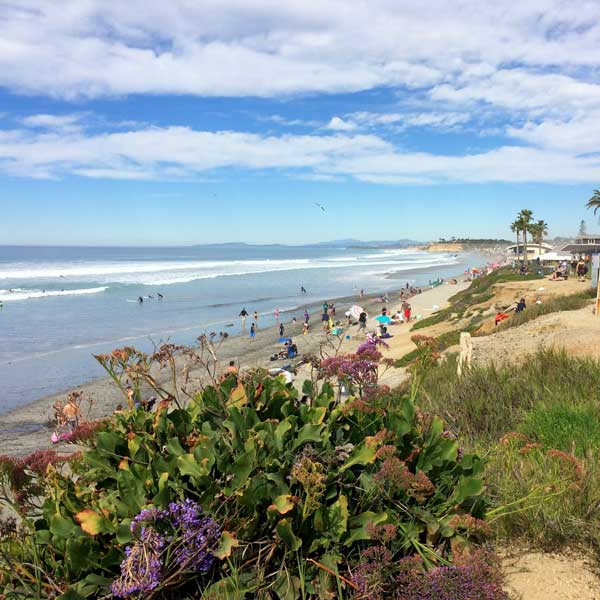 North County has more than Legos, like this beautiful beach in Del Mar.