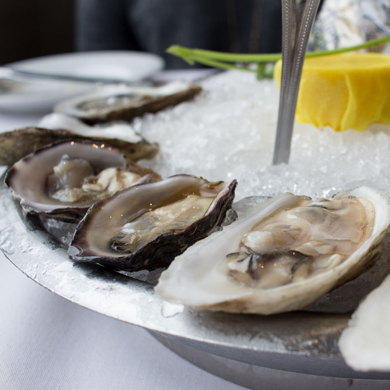 Oysters at Eddie V's La Jolla