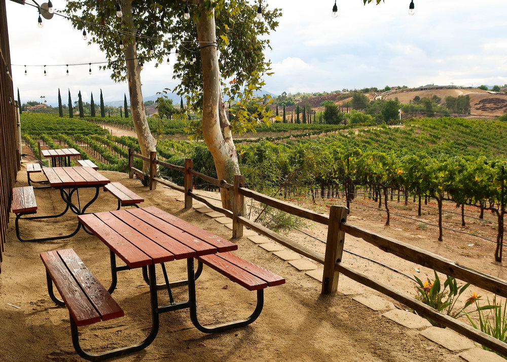 Picnic at Hart Winery in Temecula
