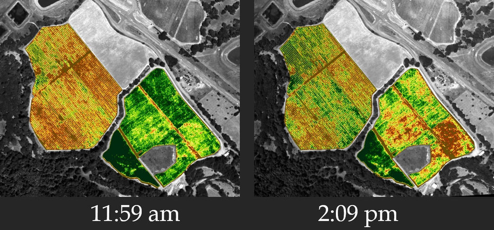 NDVI light bad.jpg