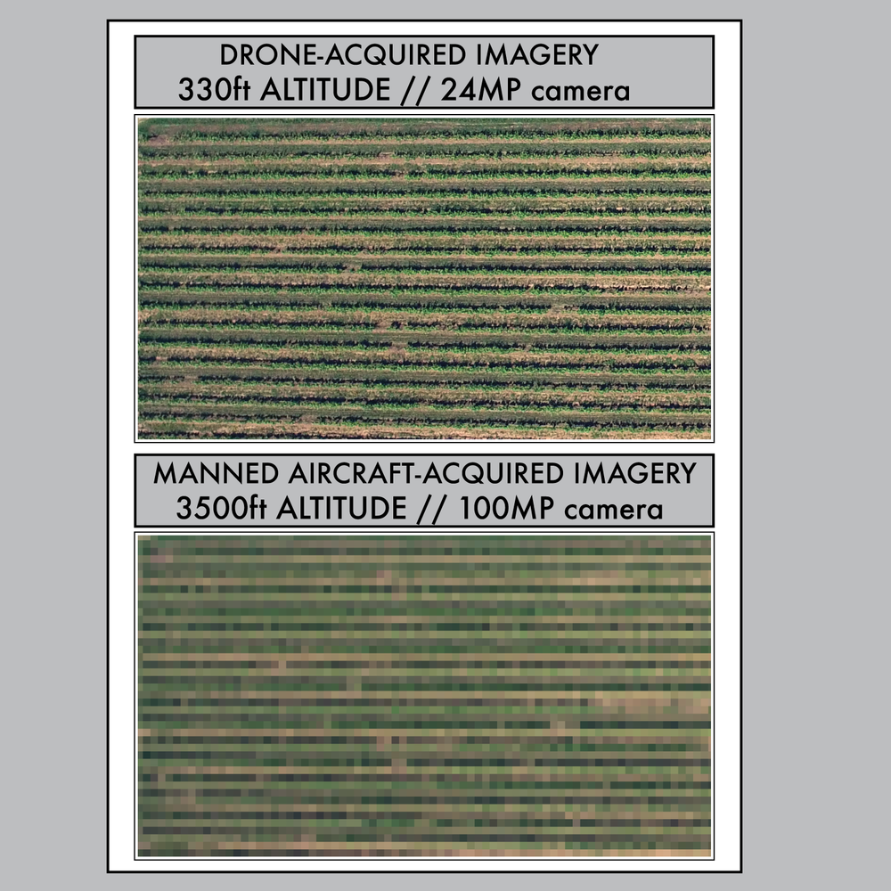 Two images of the same area in a vineyard. The image on top is was taken at low altitude using a 24-megapixel camera. It features low ground-sampling distance. The lower image was taken at ten times the altitude using a state of the art 100-megapixel camera, and features high ground-sampling distance.. For analysis of relatively small areas, the image at the top yields much more accurate information, for obvious reasons.
