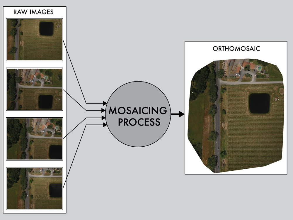 In the mosaicing process, images taken at different locations can be stitched together to form a larger image by matching features appearing in different frames.