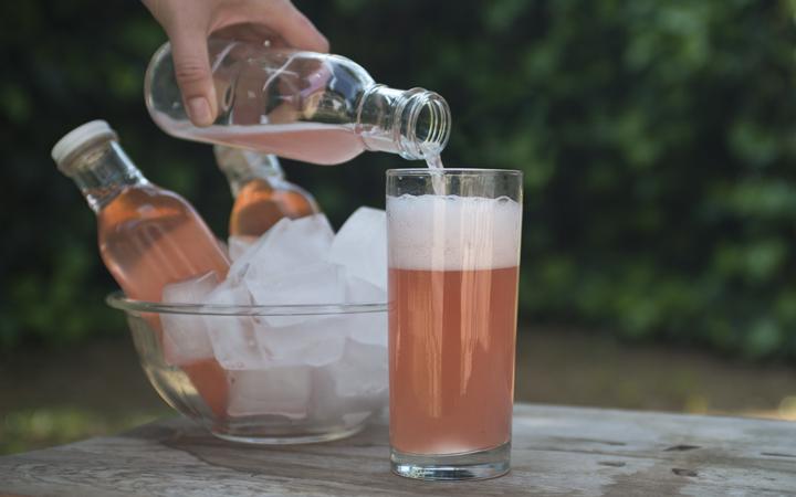 Strawberry Soda - Kefir Water.jpg