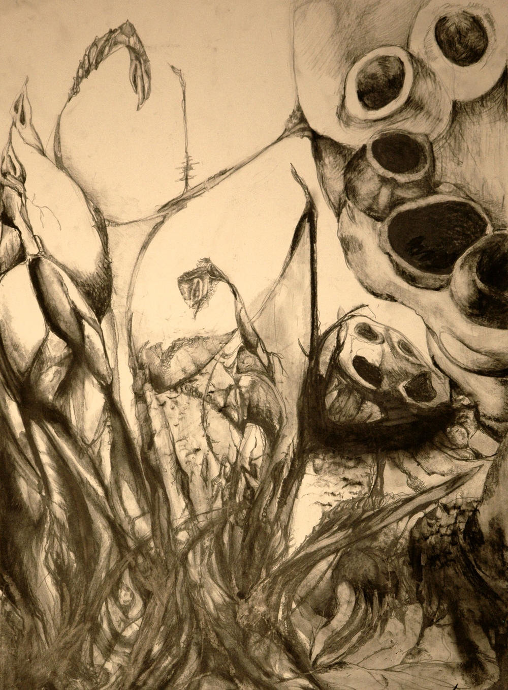 Drawing — Hannah Wilkinson