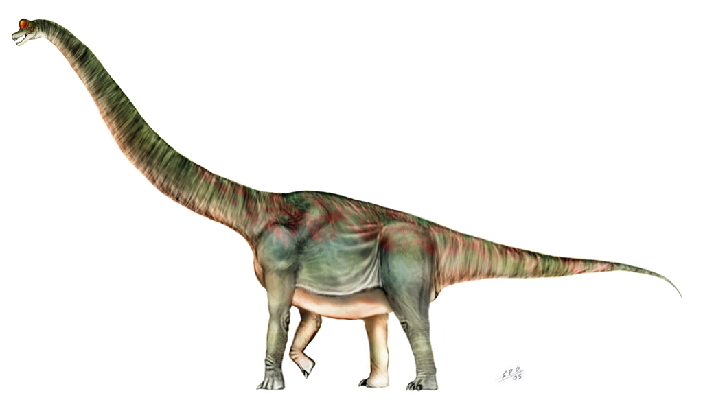 f244ed806 I miss the brontosaurus. — Matthew Dicks