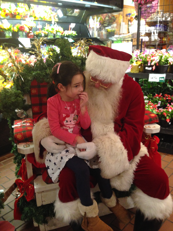 d4ed0e4789affb Santa Claus spent the day at an abomination of a grocery store