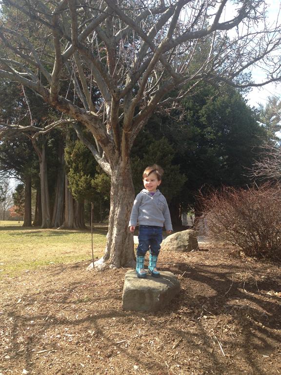 I like standing on walls and big rocks, too. — Matthew Dicks 3ef91cd1ff