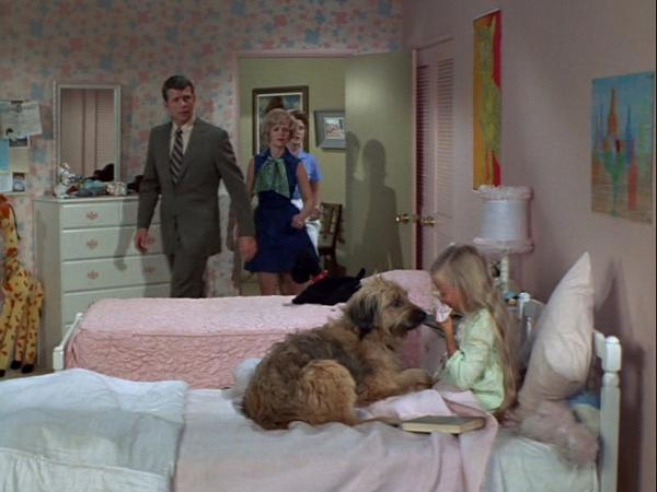 the dark incestuous side of the brady bunch including
