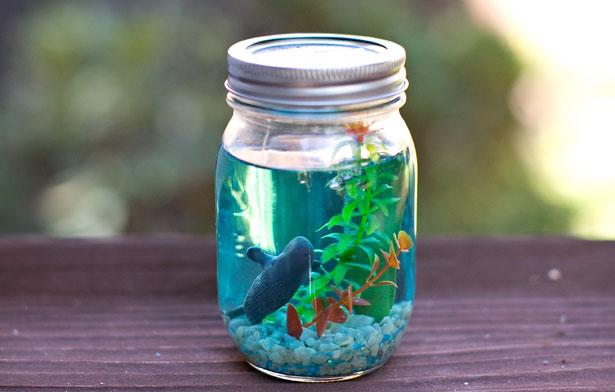 mason jar fish.jpg