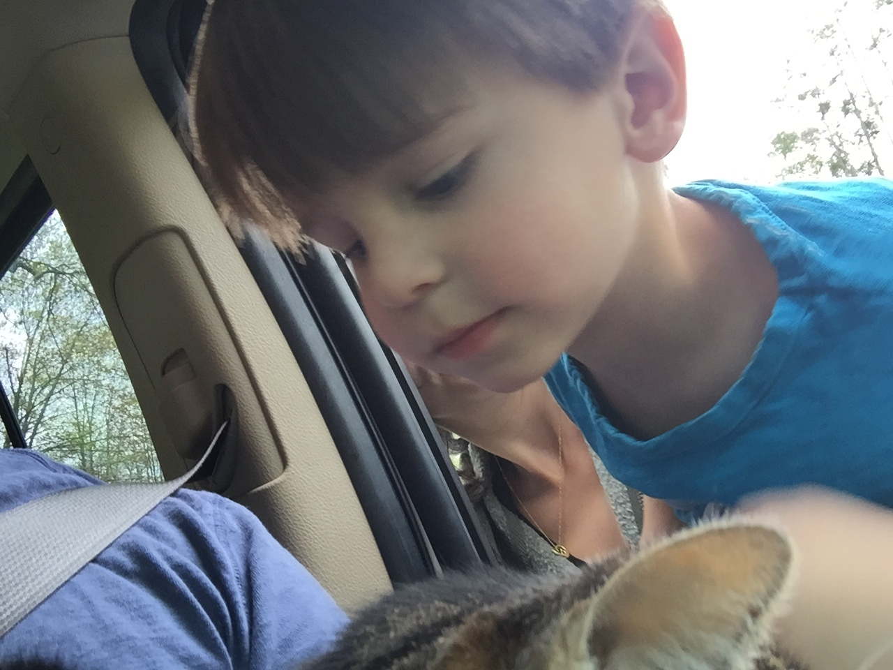 My son has become a non-stop death machine  — Matthew Dicks