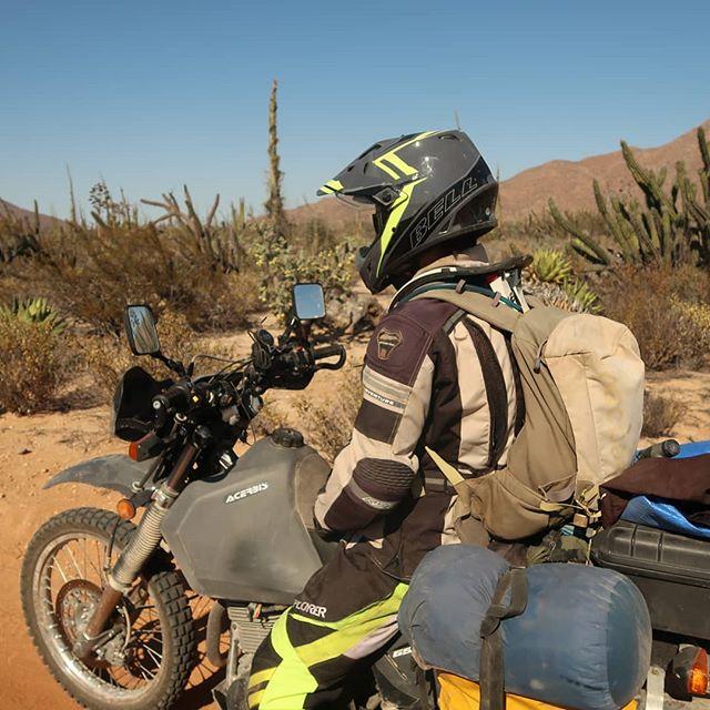 Mars Exploration . @duckduck77 #dr650 #suzuki #baja #mexico #desert #cactus #advpulse #advrider #offroad #dirtbike #thumper #adventurebike #wideopenadv #explore #baja500 #ktm #husqvarna #bell #acerbis #camping #australia #perth #650 #desertriders #offgridmoto #ftwco #kriega