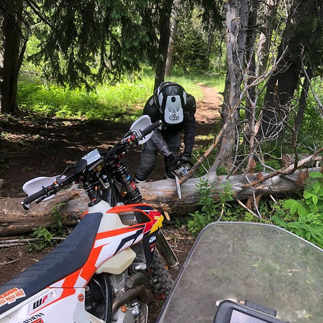 @tetonwrench clearing trail in the Big Holes #tetons #idaho #bigholes #singletrack #trailriding #offroad #dirtbikes #ktm #husqvarna #701 #enduro #thumper #advlife #offgridmoto #kriega #upshiftd #unknownmoto #wideopenadv #4stroke #woodsriding #tetonwrench #bulletproofdesigns #flatlandracing #klim