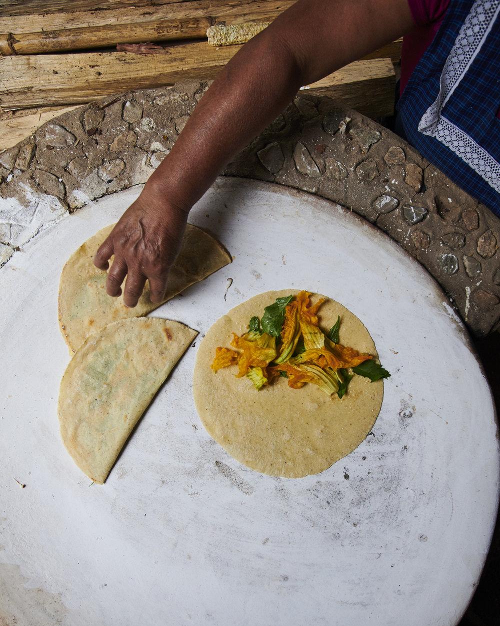 quesadillas flor de calabaza by kyle dorosz thread caravan.jpg