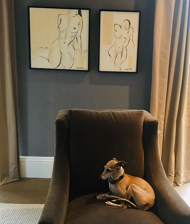 #nudeart has a new home. #italiangreyhound rounds out the room #sumiart #greyhoundsofinstagram #greyhoundcorner