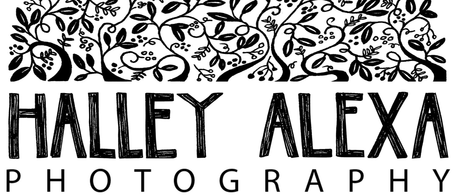 Halley Alexa Photography