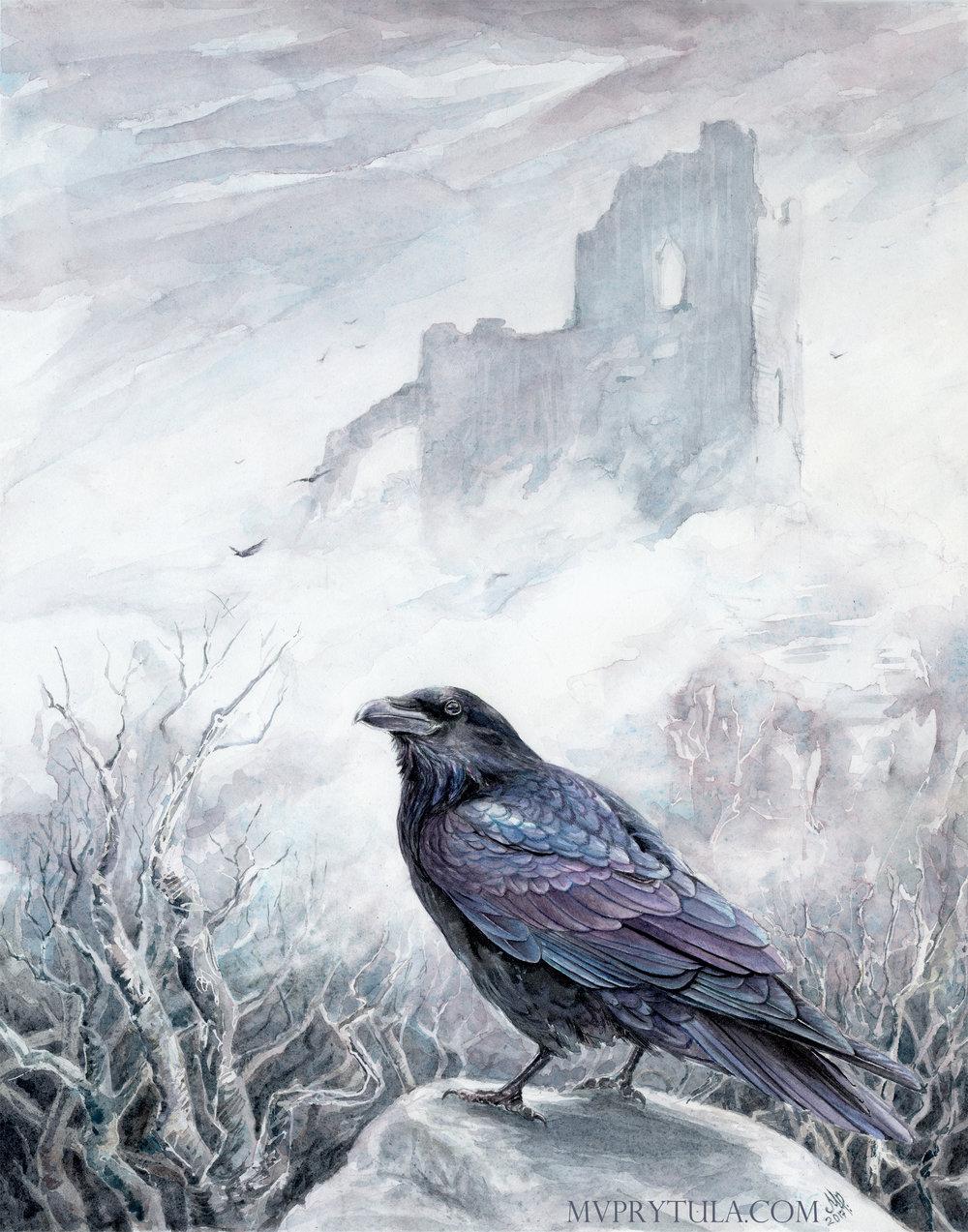 birdwhisperer_raven_300_mess_edit.jpg