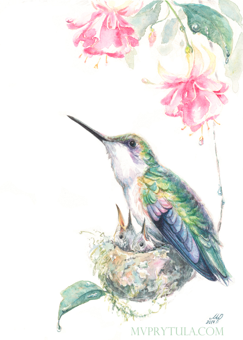 hummingbirds3_web.jpg