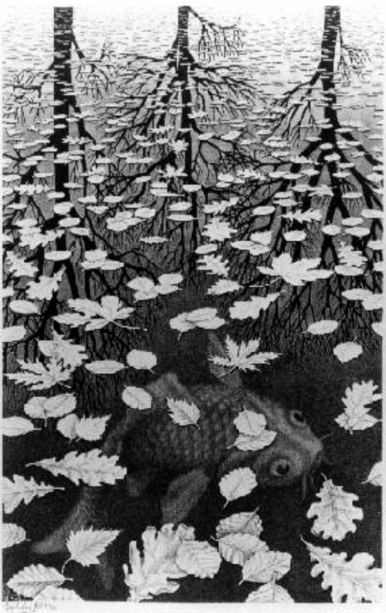 Escher - Three Worlds