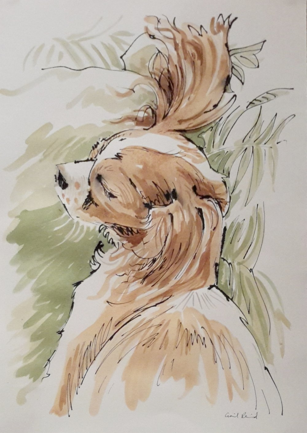 Pen and ink and watercolour wash