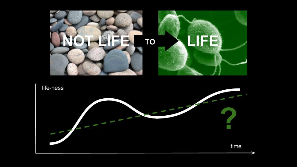 How is Life different than Non-Life?   Conceptual talk: Sundial Conference 2017