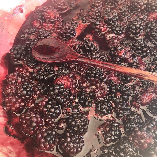 Blackberries today! Made ice cream w the huckleberries. I'll post a pic soon. Thinking ice cream again with these. Or jam? Other preserving ideas?