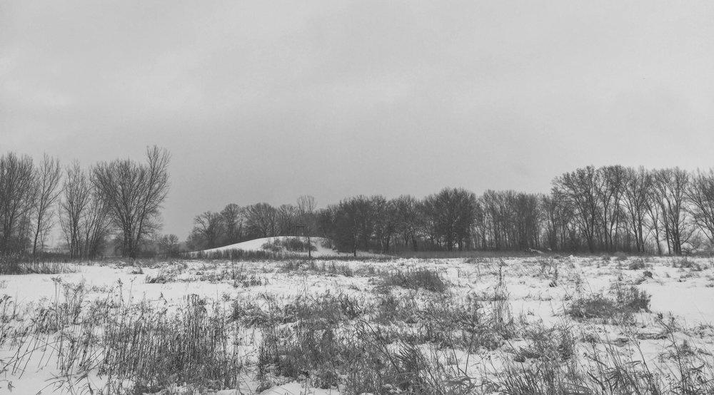 New Album: Winter