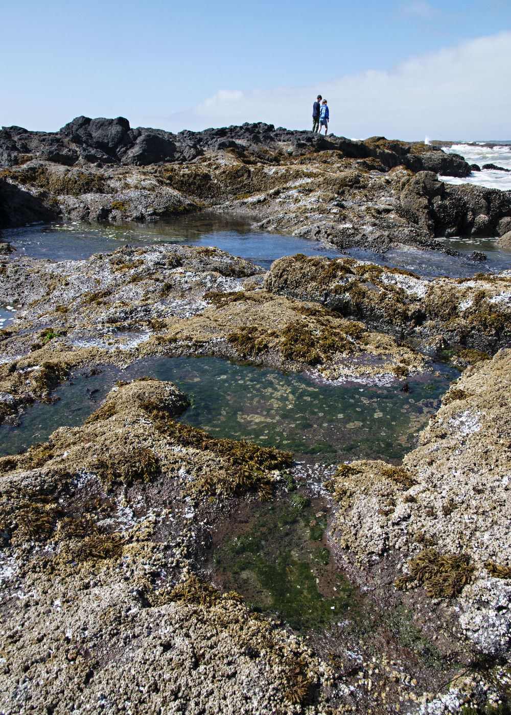 Samantha and Parker play in the tide pools.  Nikon D800, Nikkor 24-200mm lens @ 24mm, ISO 160, f11, 1/160 sec.